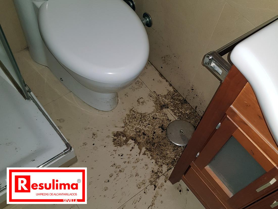 atascos de lavabos-fregaderos y desagües Sevilla